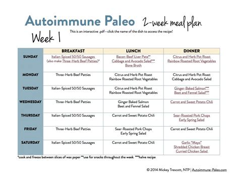 Paleo Detox Meal Plan by Best 25 Autoimmune Protocol Meal Plan Ideas On