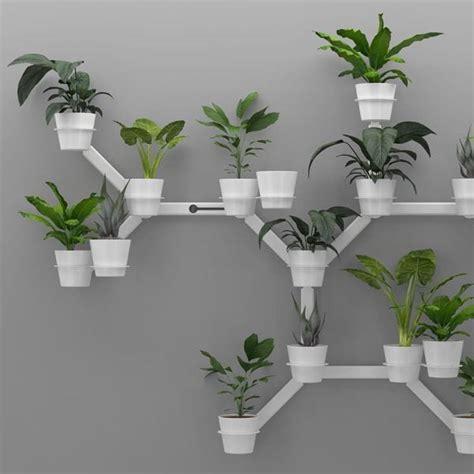 wall planter kreep planter office plants durban