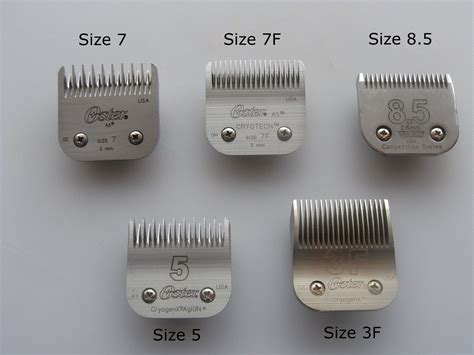 what size clippers do you use on a boys cut wheaten terrier grooming equipment