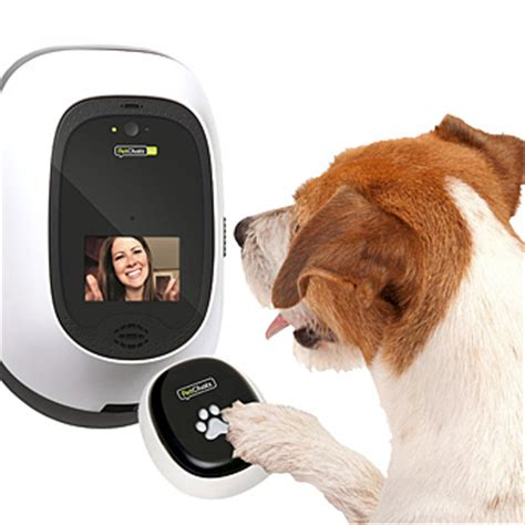 pet gadgets pet gadgets 28 images 4 pet gadgets your friends will