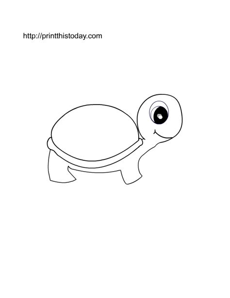 pet turtle coloring page free printable pet animals coloring pages