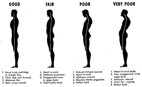 how to better posture why you likely bad posture return of