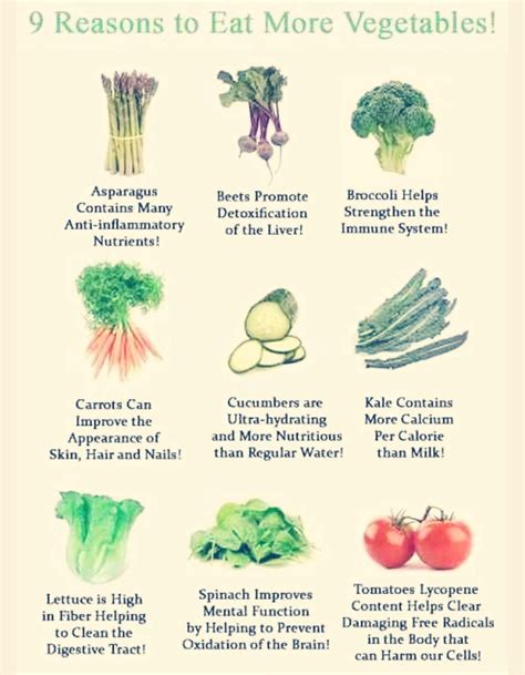 8 Reasons To Eat More Vegetables by 9 Reason To Eat More Vegetable Trusper