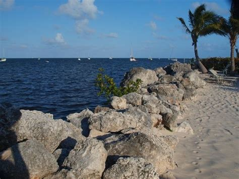 key largo key largo tourism 2017 best of key largo tripadvisor