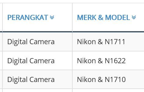 off brand: nikon's upcoming mirrorless cameras leaked