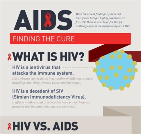 the cure is found against the hiv aids virus with a top 5 hiv aids infograhics