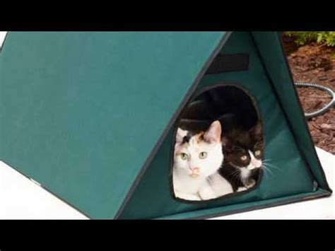 outdoor cat houses for multiple cats heated outdoor cat house for multiple cats youtube