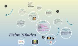 cadena epidemiologica fiebre tifoidea fiebre tifoidea by edelvey inostroza on prezi