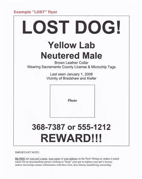 this idea is brilliant lost overlooked and underappreciated scientific concepts everyone should books lost pet flyer template free portablegasgrillweber