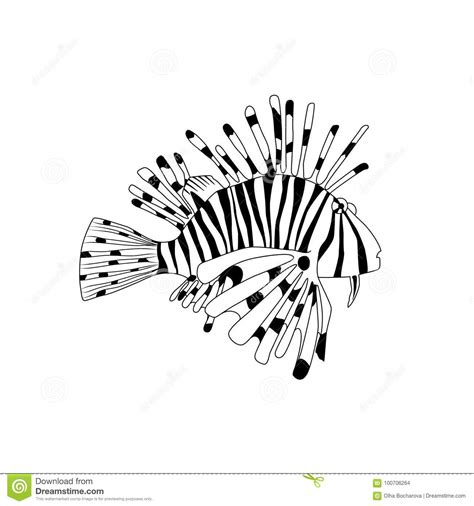 zebrafish coloring page explore coloring books adult and more coloring book lionfish