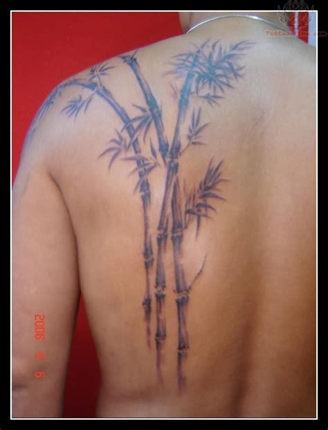 bamboo tattoos bamboo tree tattoos and designs page 17