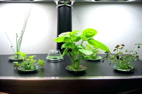 indoor herb garden light indoor herb garden light cmbodies com