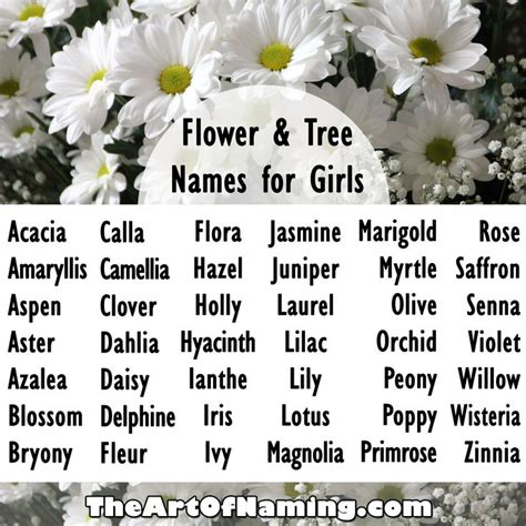 what are your favorite flower or tree names for girls babynames click to view an even more