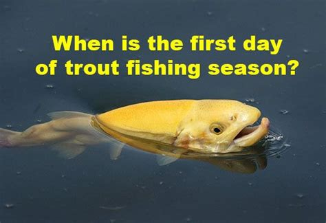 pa fish and boat commission hatcheries when is the first day of the trout fishing season when