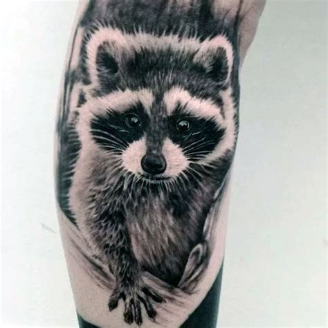 raccoon tattoos designs 80 raccoon designs for critter ink ideas