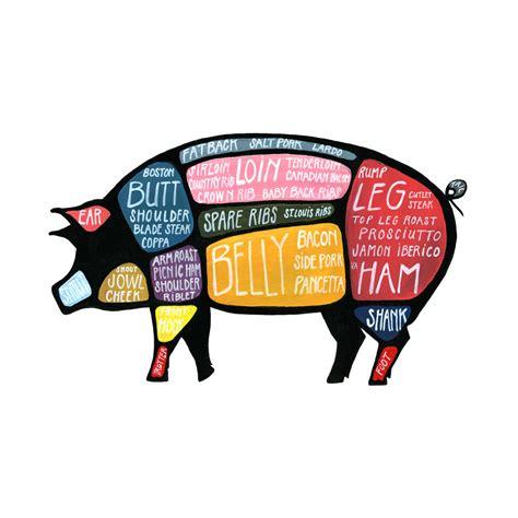 pig diagram cuts pig diagram diagram site