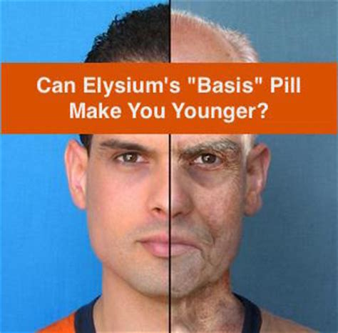 supplement elysium elysium supplement