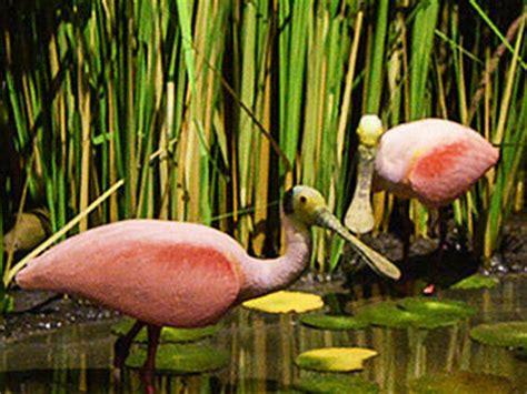 zapata wetlands