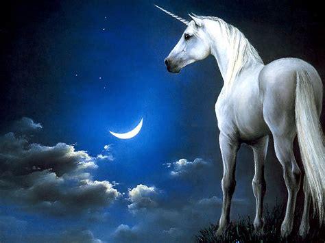 testo la porta dei sogni la porta dei sogni l unicorno