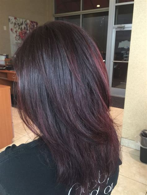 violet brown hair color 25 best ideas about violet brown hair on