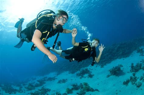 dive sistem flaws in the dive buddy system scuba diver