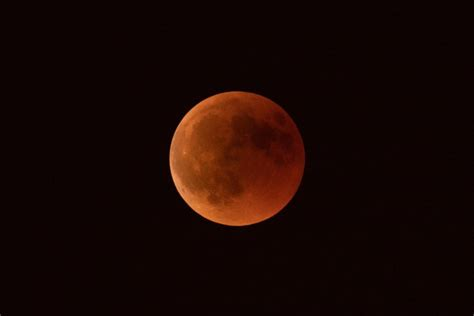 super wolf blood moon     weekends total lunar eclipse fort smithfayetteville
