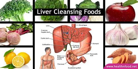 The Best Liver Detox Cleanse by Best Food For Your Liver Food