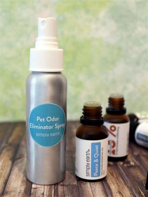 essential oils  pets recipes  dog fleas itchy skin