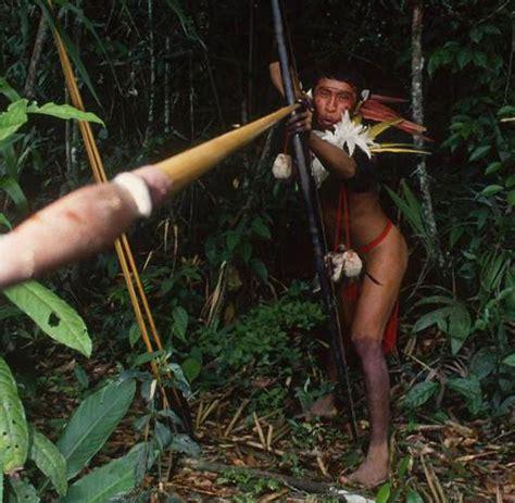 Home Design Blogs by Amazonas Regenwald Isolierte Ureinwohner T 246 Ten Goldgr 228 Ber