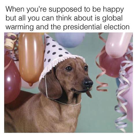 Dachshund Birthday Meme - best 25 happy birthday dog meme ideas on pinterest