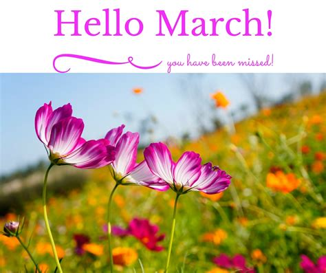 hello march what to do and cook this month