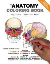 human anatomy coloring book barnes noble the anatomy coloring book edition 4 by kapit