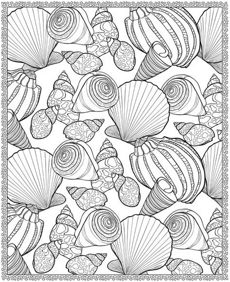 7 Seaside Colouring Pages Coloring Pages Pinterest Seashell Coloring Page