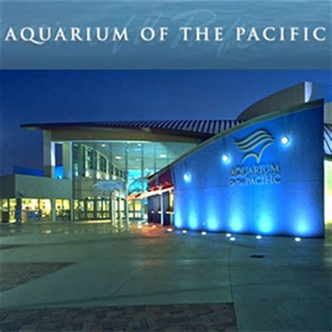 Of The Pacific Mba Application by Aquarium February 11th