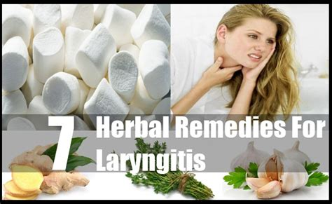 7 effective herbal remedies for laryngitis how to treat