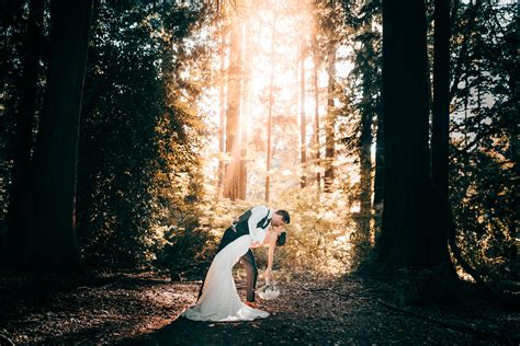 Best Trees For Backyard Forest Wedding Photos Vancouver Wedding Photographer