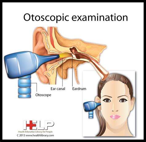 ear examination with otoscope 12 best anatomy head to toe images on pinterest human