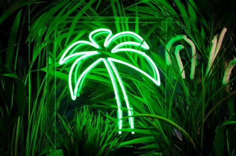 buy tree lights where can i buy neon lights popsugar home uk