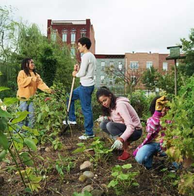 start  community garden howstuffworks
