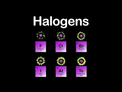 halogen elements periodic table halogens halogens halogens periodic table