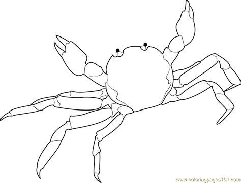 ghost crab coloring page ghost crab coloring page crab coloring pages crab