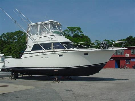bertram boats 1981 bertram 38iii convertible power boat for sale www