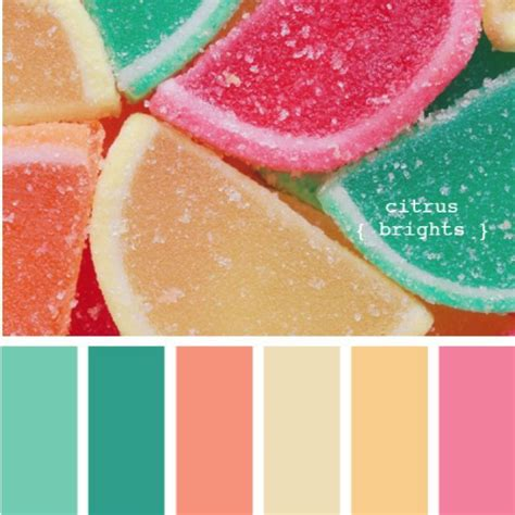 may colors 17 best ideas about tropical colors on pantone