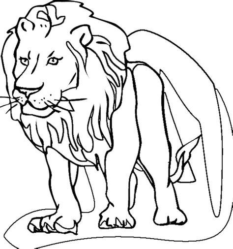 imagenes de leones infantiles para colorear dibujos leones imagui