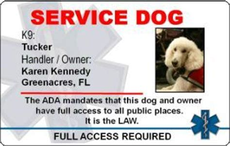 Animal Id Card Template by Service Fraud And The Problem By Stopbsl On Deviantart