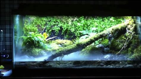 types of aquariums awesome freshwater fish pets www pixshark com images