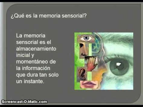 la memoria secreta de b01ncohep4 memoria sensorial youtube