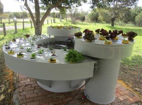 images  garden aquaponics  pinterest