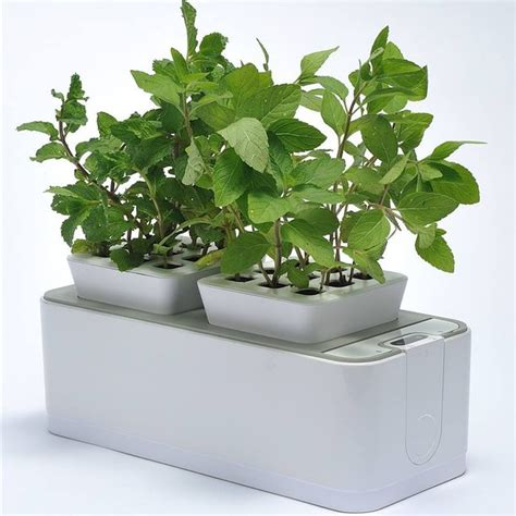 indoor garden technology quranic verses collection deal usortd buying together made easy