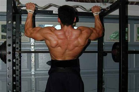 exercises  build  muscles